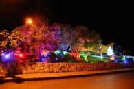 بلدة بلاط تتزيّن بأشجار الميلاد