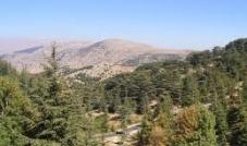 وحوش آليّة... تقضم جبال لبنان وتشوّه إرثه البيئي