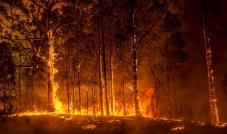 كوارث طبيعية وخسائر فادحة بانتظار العالم بسبب التغيّرات المناخية وتداعياتها على البيئة والتنمية المستدامة وأثرها على البيئة ومستقبل شعوب العالم