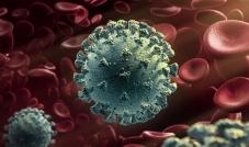 سلالة فيروس كورونا الجديدة لديها عوامل عدّة تدفع لإثارة القلق