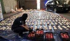 مصير دخول الفواكه والخضار من لبنانالى السعودية