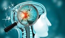 هدف جديد في جسم الإنسان لفيروس كورونا